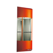 Fjzy Panoramic Cheap Elevator-Ascensor2045