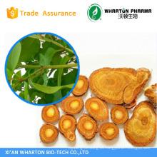 Resveratrol natural; extracto de la piel de uva trans resveratrol Extracto de Polyphenols polygonum cuspidatum