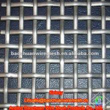 De alta calidad galvanizado BWG 14 rizado malla de alambre en instore
