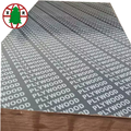 16mm Construction Plywood for Sales