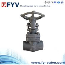 API 602 Válvula de compuerta de acero forjado F304