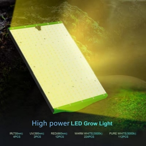 WENYI Commercial Qb354 Board Dimmerabile Led Grow Light