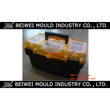 Experienced Customized Injectionplastic Toolbox Mould
