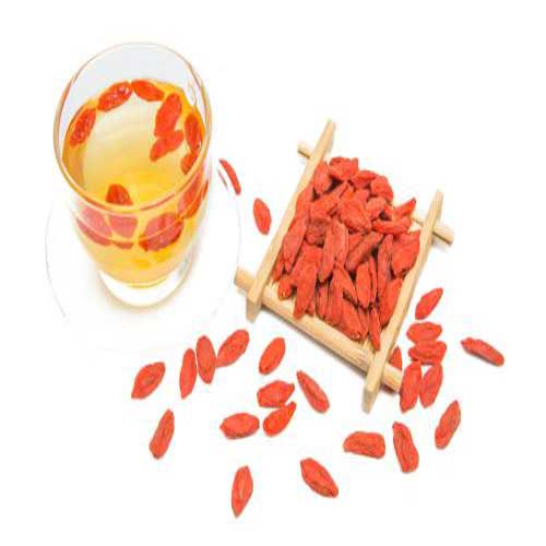 goji berry and pregnancy