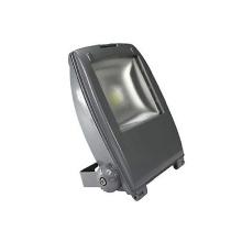 ES-20W Low voltage LED Landscape Lighting
