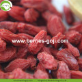 Pabrik Bulk Packing Tipe Herbal Wolfberries