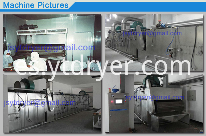 DWT mesh Belt Dryer machine Drying heat sensitive raw mater