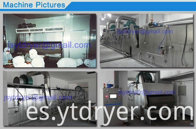 Belt Dryer for Dehydration Vegetable