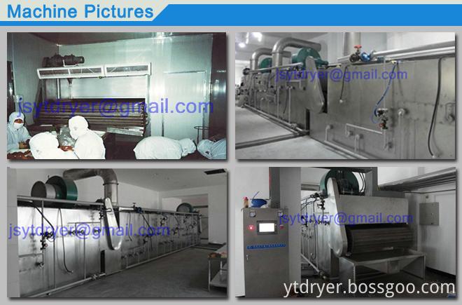DWT mesh Belt Dryer machine Drying heat sensitive raw mater
