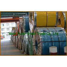 DIN 310S (845) Cold Rolled Steel Coil