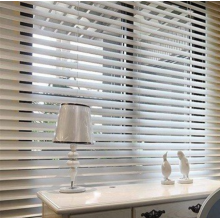 Shangri-la Roller Shades Curtain Hot Sale