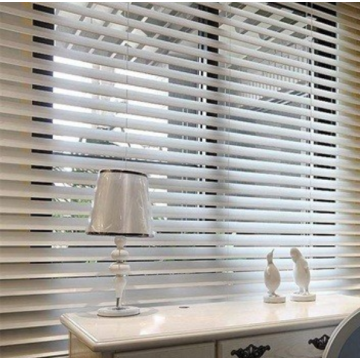 Hot Sale Rideau Shangri-la Roller Shades