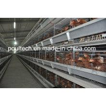 2016 Neue Schicht Huhn Käfig System