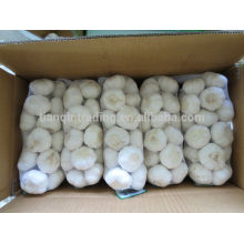 Paquetes de ajo chino 1kg / bolsa, 10kg / cartón
