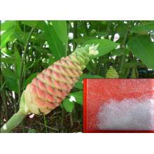 Zingiber Zerumbone Smith Extract, CAS#: 471-05-6, Zerumbone 99%