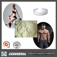 99% poudre d'oestrogène Letrazole Femara de poudre stéroïde pour l'amélioration masculine