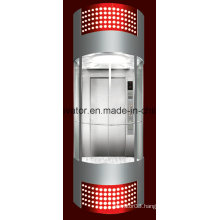 Profession and Comfortable Panoramic Elevator (JQ-A035(B))