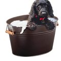 Piscine pour chien Pet Wash Bathing Bath