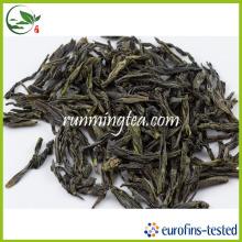 Polyphenol Antioxidant Green Tea Caffeine