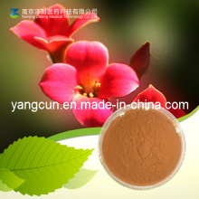 Salidroside (CAS: 10338-51-9) Rose-Boot Extract