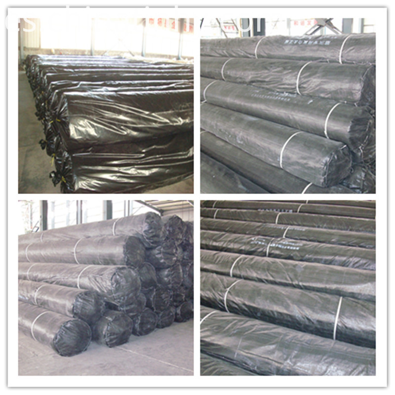 HDPE Geomembrane for Dam
