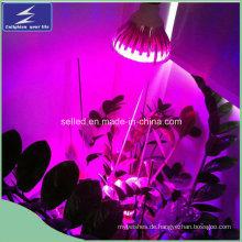 12W LED wachsen Lichter für Garten-Gewächshaus