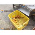 4 уровня автоматического картофель помидоры орех для сортировки и калибровки машина