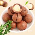 Productos agrícolas al por mayor nueces de macadamia de alta calidad