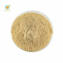Chlorogenic Acid 50% Powder From Green Coffee Bean Extract Chlorogenic Acid
