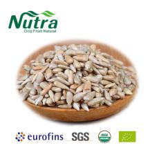 Granos de semillas de girasol orgánicas