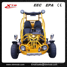 Adults Chinese Manufactures Mountain Gas Beach Offroad Buggy