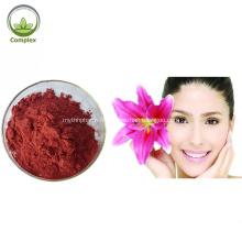 Lycopène 100% Pigment Naturel CAS 502-65-8