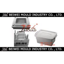 Injection Plastic Storage Case Mould Manufacturer