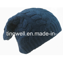 SGS Fashion Cable Beanie Hat Knitted Hat (TWS-knit-014011)