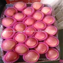 Yantai Frisches Obst rote Fuji Apfel besten Preis Exporteur in China