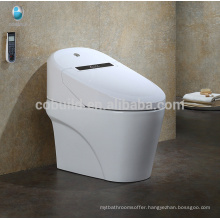 CB-707 Gold supplier Electronic Smart Automatic Operation Intelligent Toilet