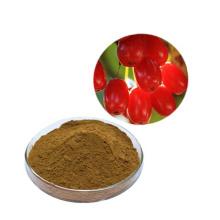 Free samples Organic Red Raspberry Extract Powder Fructus Corni Extract Powder