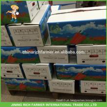 2016 Fresh Vegetais Carton Embalagem Para Cenoura Fresca Preços
