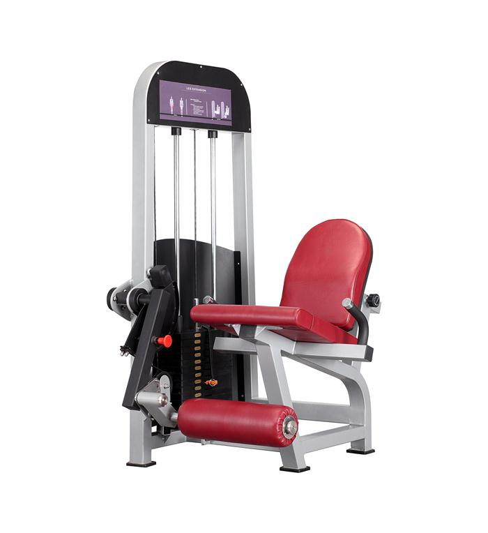 MT-6019 seated leg extension