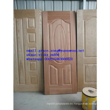 Piel natural de la puerta de chapa