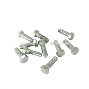 Hex cap screw/Hex head bolt