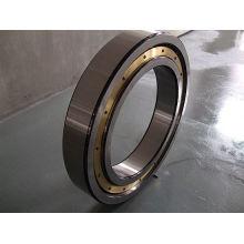Rodillo de cerámica de alta velocidad de la vibración del cojinete de bolitas del contacto angular 110bnr10