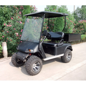 Vendo golf cart da 2 posti nuovi