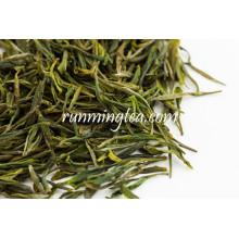 Feuilles de thé vert Boissons de thé