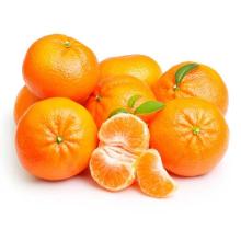 Refreshing And Scented Fresh Citrus Baby Mandarin Orange