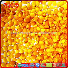 L'huile essentielle de baies de goji de qualité supérieure huile de graines de goji huile de goji huile bonne pour la santé