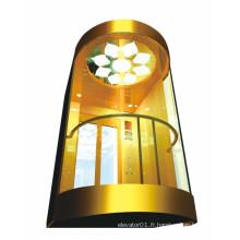 Capsule Elevator, ascenseur panoramique pour visites touristiques (XNG-008)