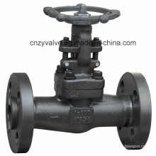 Forged A105 Class600 Flanged Gate Valve