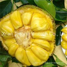 Jackfruit Powder / Jackfruit Juice Powder /Jackfruit Extract Powder