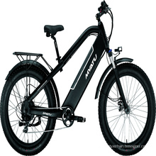 Variable speed electric bicycle